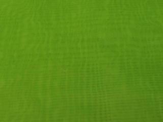 Sheer Fabric Green Kiwi