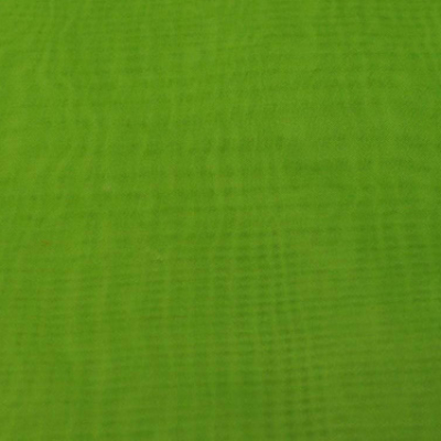 Sheer Fabric Green Kiwi