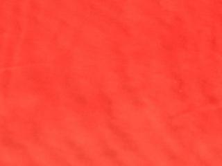 Sheer Fabric Red Poppy