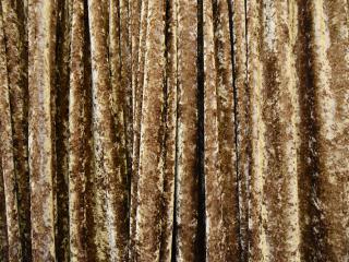 Velour Fabric Gold